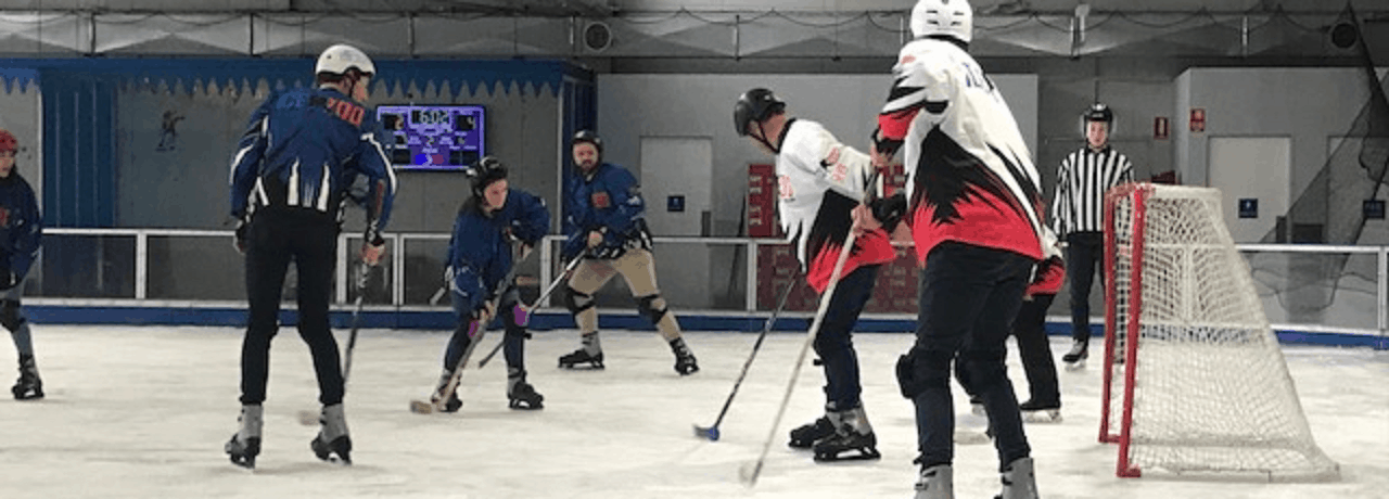Team Building Event at Ice Zoo